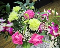 pink-roses-close-up