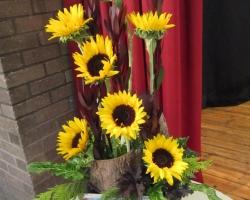 asunflowers