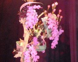 orchids-on-driftwood.jpg