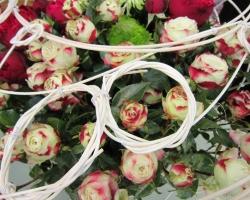 pom-pom-roses