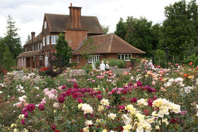 Visit To Royal National Rose Society Gardens St Albans