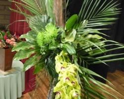 sml-orchid.jpg